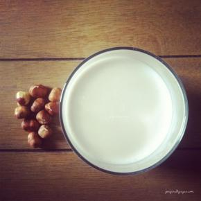 Raw Hazelnut Milk